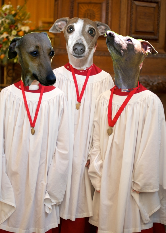 Iggy Choir